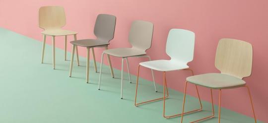 Babila series Pedrali - Babila chairs